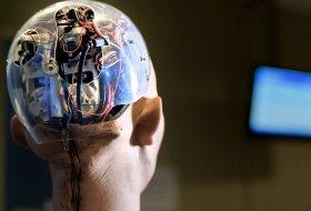 Yapay zeka Amerika'da 54 kişiyi yaraladı